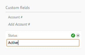 custom-field-account.png